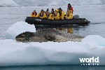 Antarctic Express Cruise South, Fly North