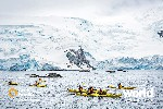 Antarctic Fly Cruise