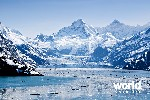 Bear Track Inn - Glacier Bay
