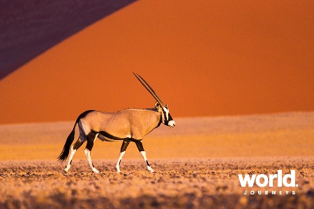 The Namibia Journey
