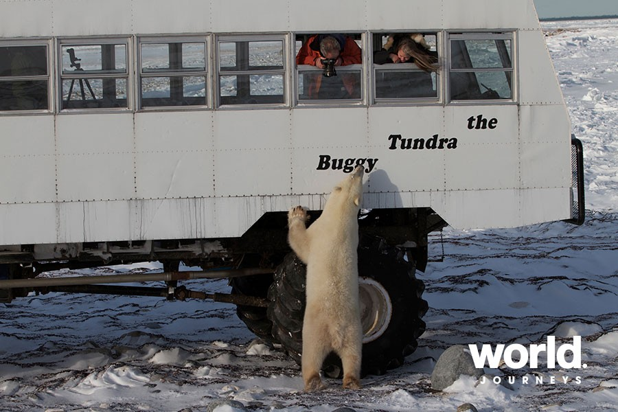 Tundra Buggy Lodge at Polar Bear Point