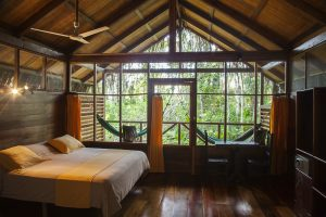 Sacha Lodge, Suite